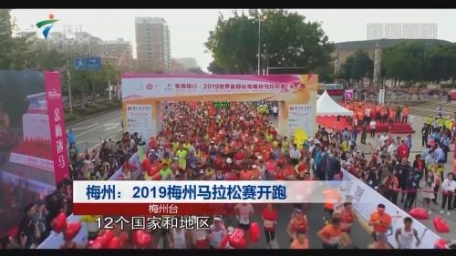 梅州:2019梅州马拉松赛开跑