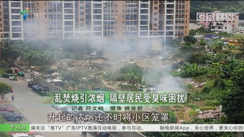 乱焚烧引浓烟 隔壁居民受臭味困扰
