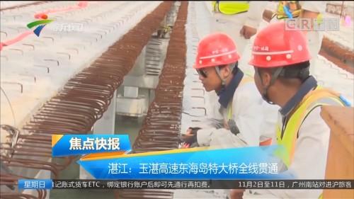 湛江:玉湛高速东海岛特大桥全线贯通