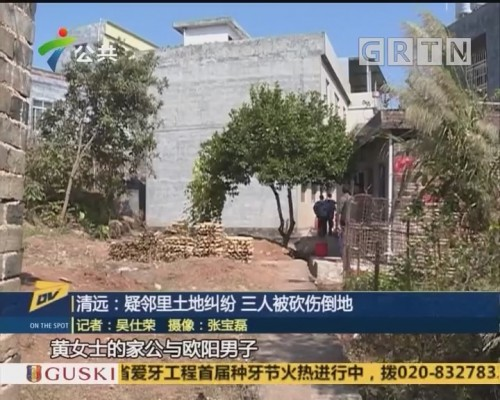 (DV现场)清远:疑邻里土地纠纷 三人被砍伤倒地