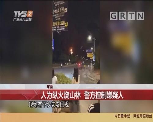 东莞:人为纵火烧山林 警方控制嫌疑人