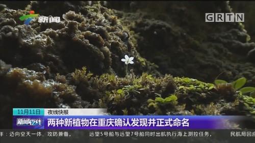 两种新植物在重庆确认发现并正式命名