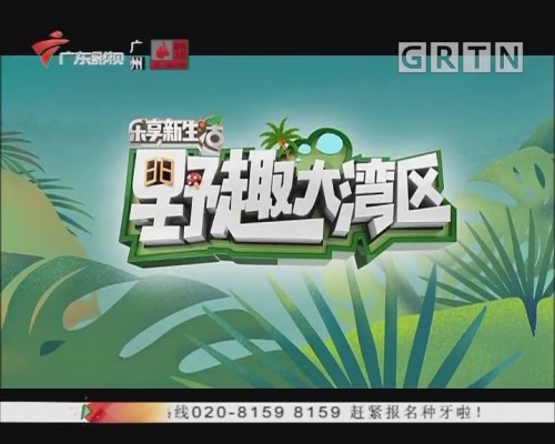 [2019-11-21]乐享新生活-智活大湾区