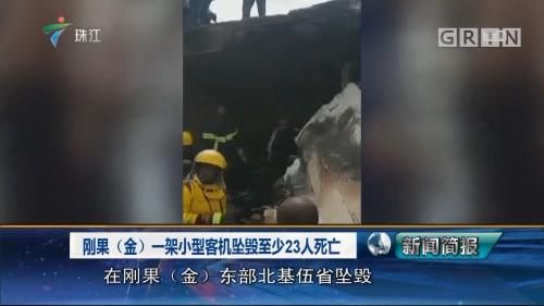 刚果(金)一架小型客机坠毁至少23人死亡