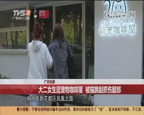 广州花都 大二女生逛宠物咖啡屋 被猫跳起抓伤腿部