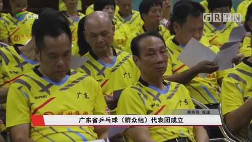 广东省乒乓球(群众组)代表团成立