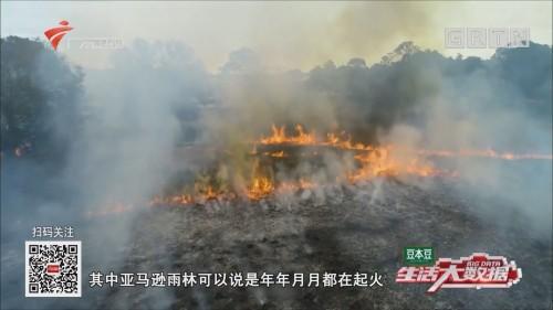 亚马逊雨林火灾