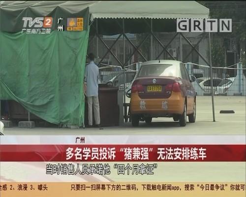 """广州 多名学员投诉""""猪兼强""""无法安排练车"""