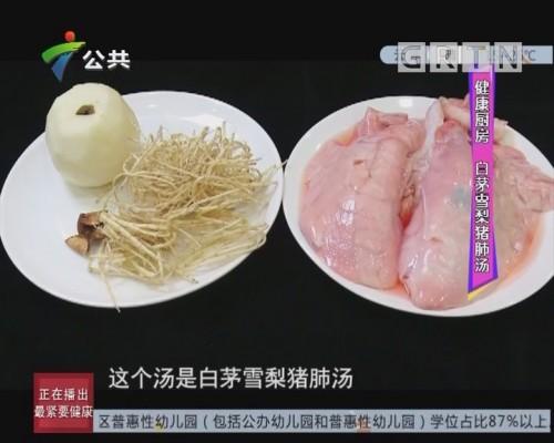 健康厨房:白茅雪梨猪肺汤