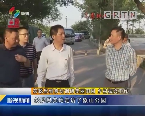彭聪恩到杏坛调研美丽田园 乡村振兴工作