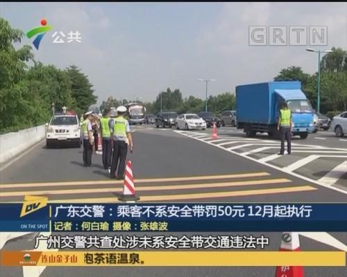 (DV现场)广东交警:乘客不系安全带罚50元 12月起执行