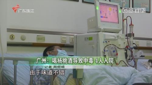 广州:喝杨桃酒导致中毒 4人入院