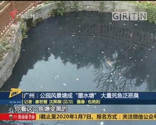 "(DV现场)广州:公园风景地成""墨水塘"" 大量死鱼泛恶臭"