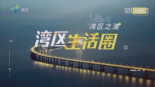 [HD][2019-12-08]湾区生活圈