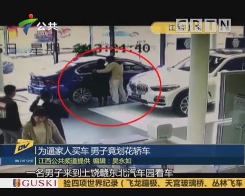 (DV现场)为逼家人买车 男子竟划花轿车