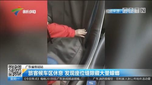 广东省客运站 旅客候车区休息 发现座位缝隙藏大量蟑螂