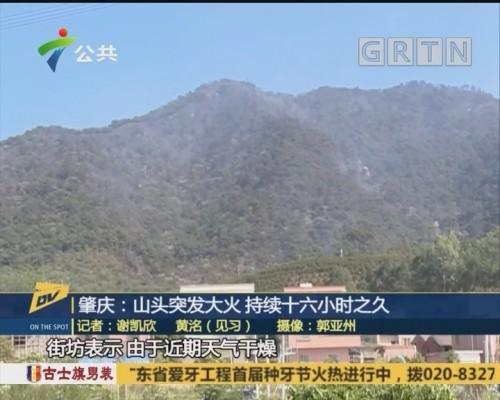 肇庆:山头突发大火 持续十六小时之久