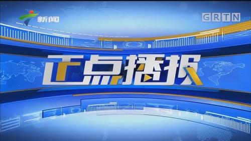 [HD][2019-12-07]正点播报:佛山凌云山林火最新消息:东西北线明火基本扑灭 多支队伍进场清理余火