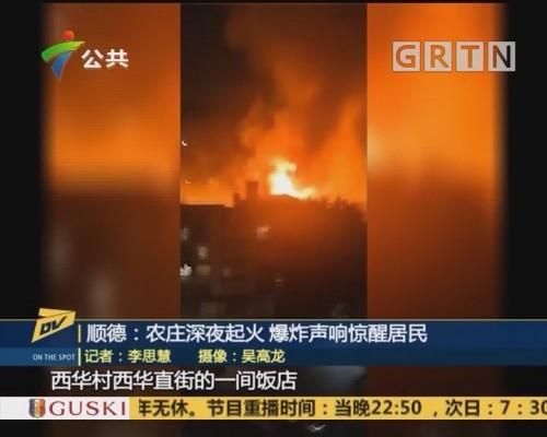 (DV现场)顺德:农庄深夜起火 爆炸声响惊醒居民