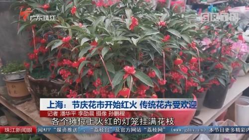 上海:节庆花市开始红火 传统花卉受欢迎
