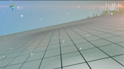 [HD][2019-12-04]今日关注:湛江吴川:村支书借违规土葬敛财