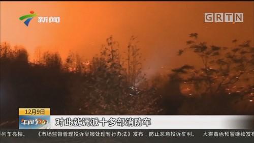 有力应对森林火灾 佛山:彻夜扑救 连续作战十几小时控制火情