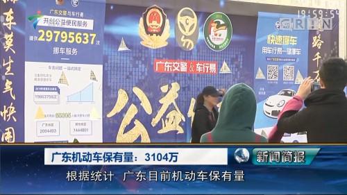 广东机动车保有量:3104万