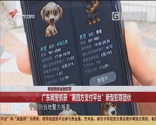 """新型网络金融犯罪 广东网警抓获""""第四方支付平台""""新型犯罪团伙"""