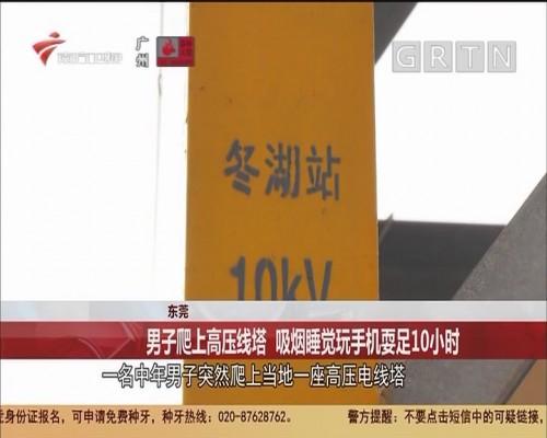 东莞:男子爬上高压线塔 吸烟睡觉玩手机耍足10小时