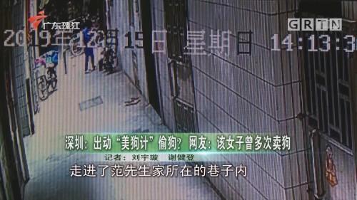 """深圳:出动""""美狗计""""偷狗? 网友:该女子曾多次卖狗"""