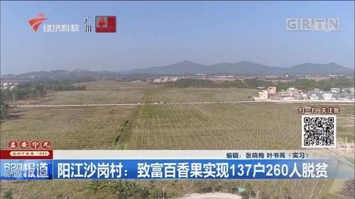 阳江沙岗村:致富百香果实现137户260人脱贫