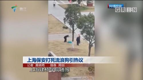 上海保安打死流浪狗引热议