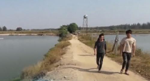 湛江:鱼塘大量死鱼 惠民清淤还是扰民挖沙?