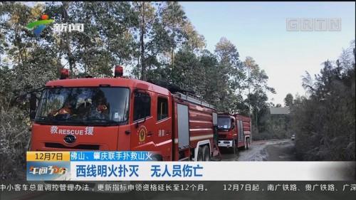 佛山、肇庆联手扑救山火:西线明火扑灭 无人员伤亡