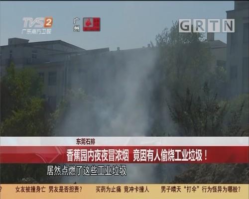 东莞石排 香蕉园内夜夜冒浓烟 竟因有人偷烧工业垃圾!