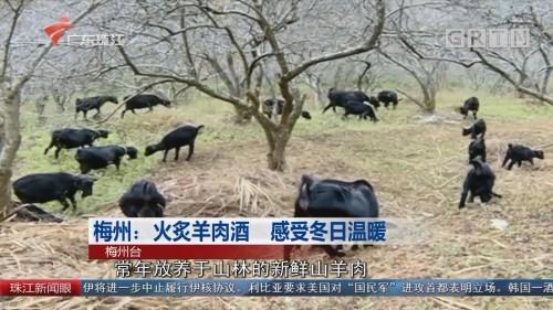 梅州:火炙羊肉酒 感受冬日温暖