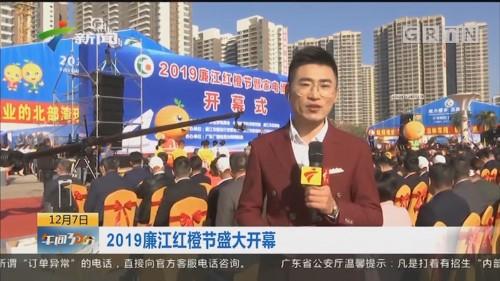 2019廉江红橙节盛大开幕