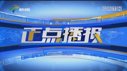[HD][2019-12-07]正点播报:广东佛山:佛山高明区荷城街凌云山发生山火