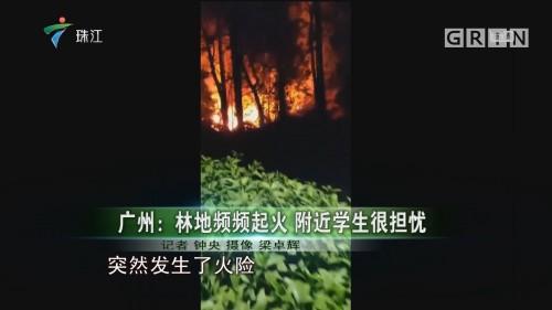 广州:林地频频起火 附近学生很担忧