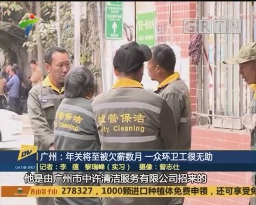 (DV现场)广州:年关将至被欠薪数月 一众环卫工很无助