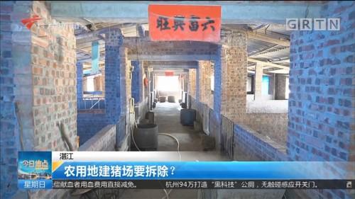 湛江 农用地建猪场要拆除?