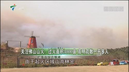 关注佛山山火:过火面积3000亩 高明疏散一千多人