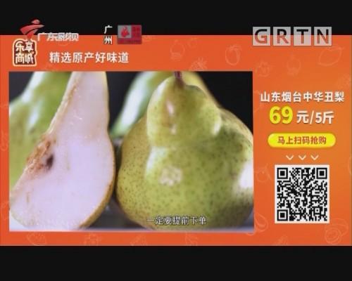 山东烟台中华丑梨