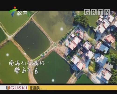 我冇水你:南海九江璜玑鹭鸟天堂