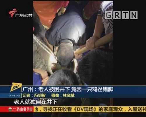 (DV现场)广州:老人被困井下 竟因一只鸡岔错脚
