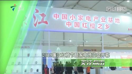 2019廉江红橙节暨家电博览会开幕