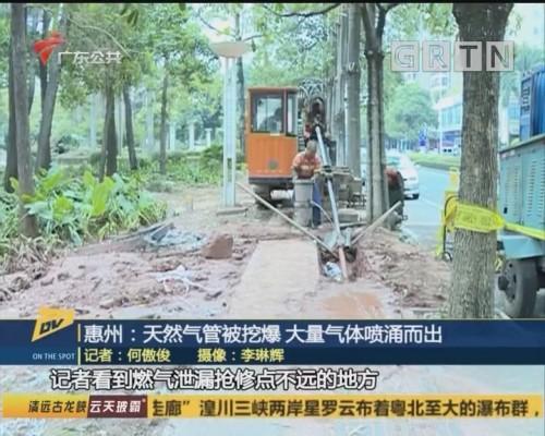 (DV现场)惠州:天然气管被挖爆 大量气体喷涌而出