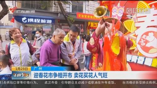 广州:迎春花市争相开市 卖花买花人气旺