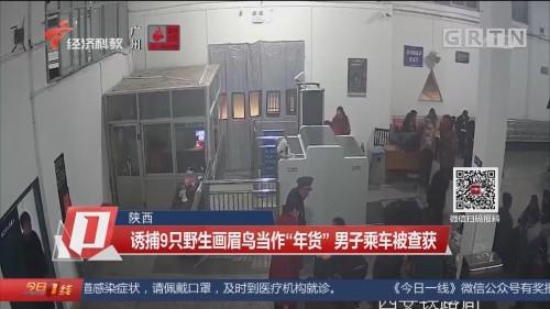 """陕西 诱捕9只野生画眉鸟当作""""年货"""" 男子乘车被查获"""