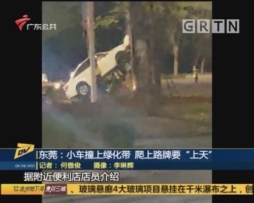 """(DV现场)东莞:小车撞上绿化带 爬上路牌要""""上天"""""""